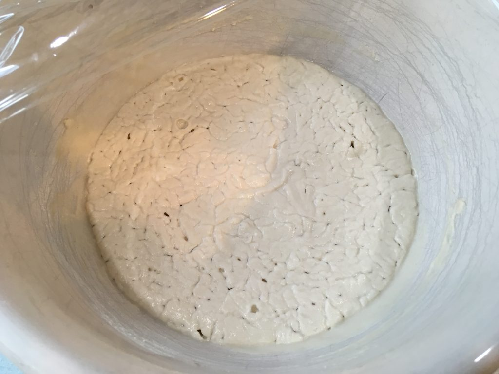 gluten-free-sourdough-starter